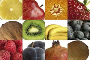 Calendrier Des Poissons Et Fruits De Mer De Saison.Bien Manger Selon Les Saisons C Est Apprendre A Bien